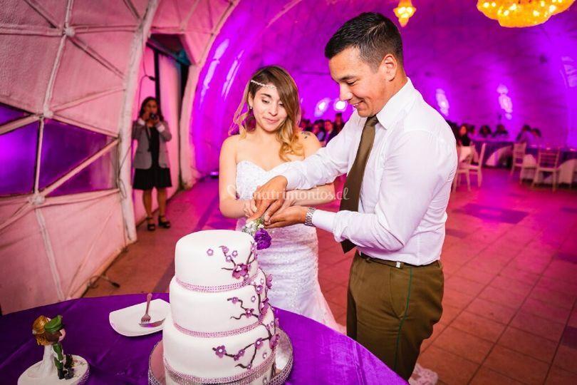 Corte de la torta