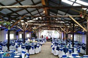 Alba Deco & Diseño de Eventos