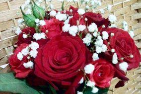 Florería Mary Paz