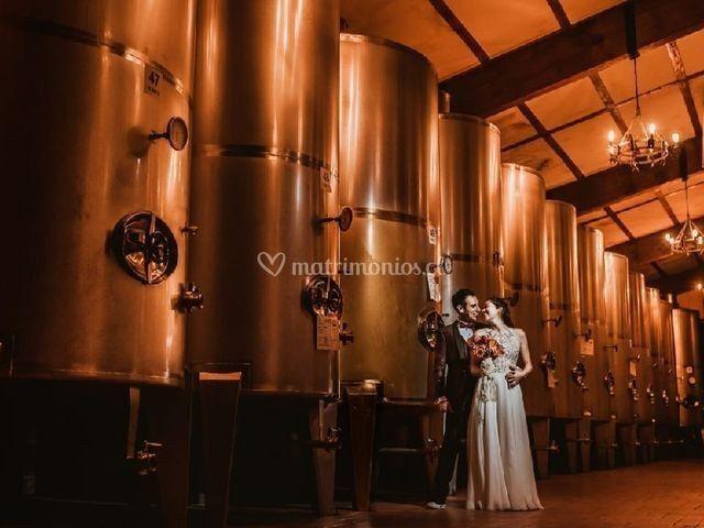 Fotos en sala de guarda vinos
