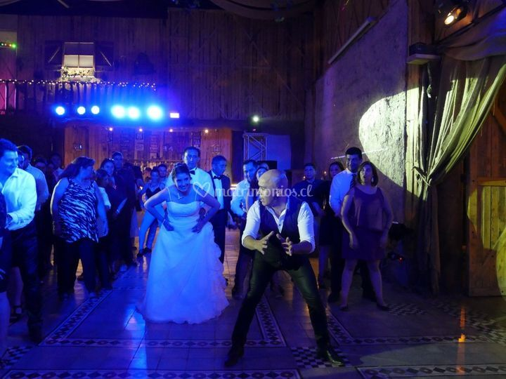 Baile entretenido fiesta