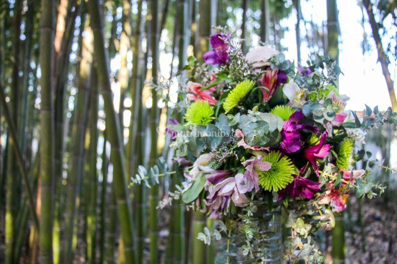 Deco bambús