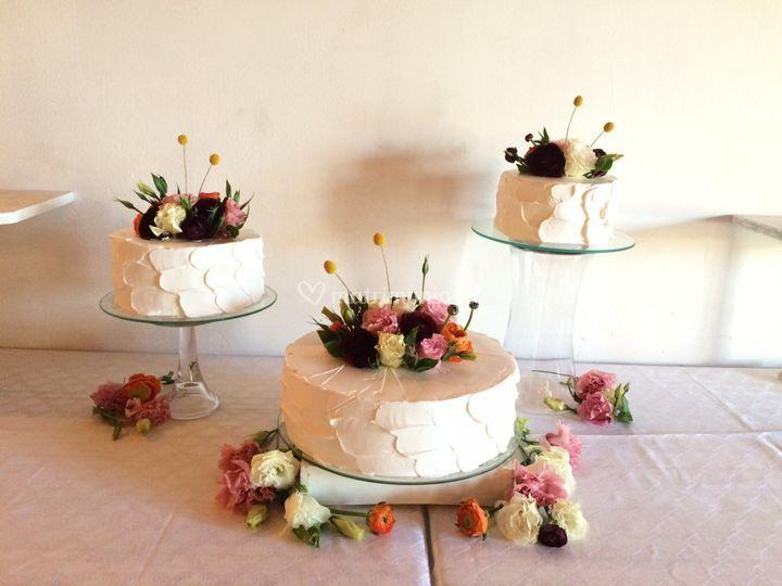 Torta dispersa en crema