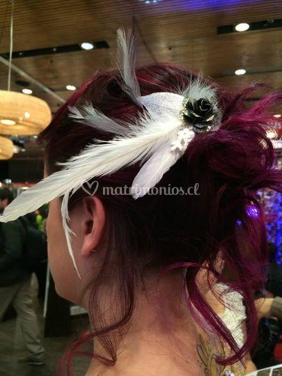 Con plumas