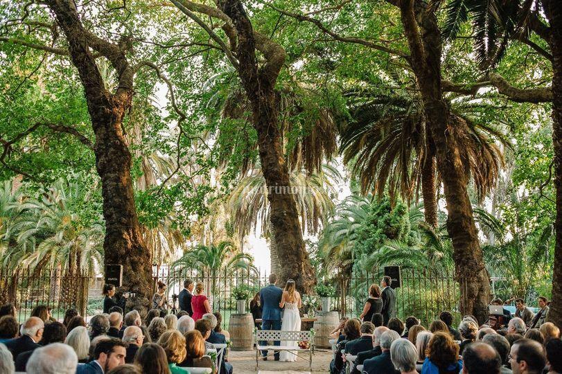 Ceremonias bajo el parque