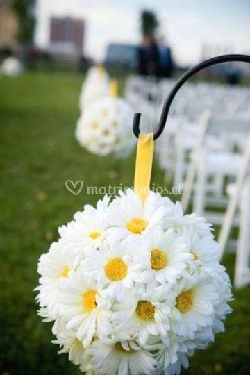 Pasillo bodas