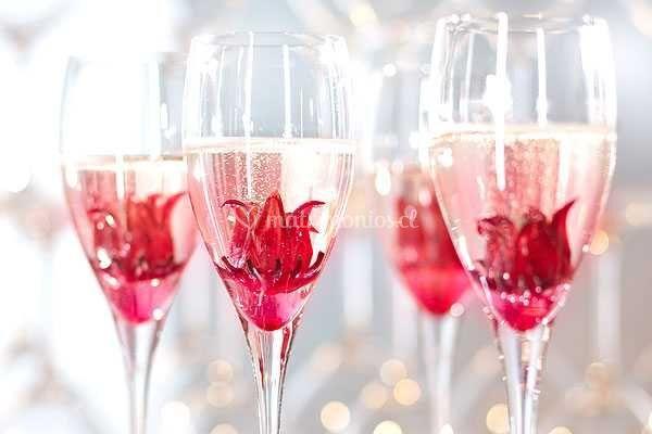 Hibiscus en las copa