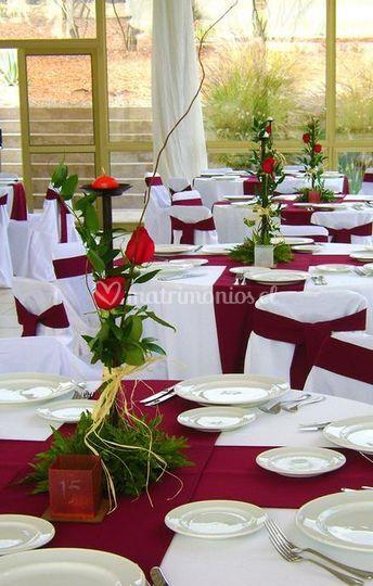 Rosas para el banquete