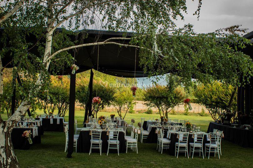Matrimonio en jardín