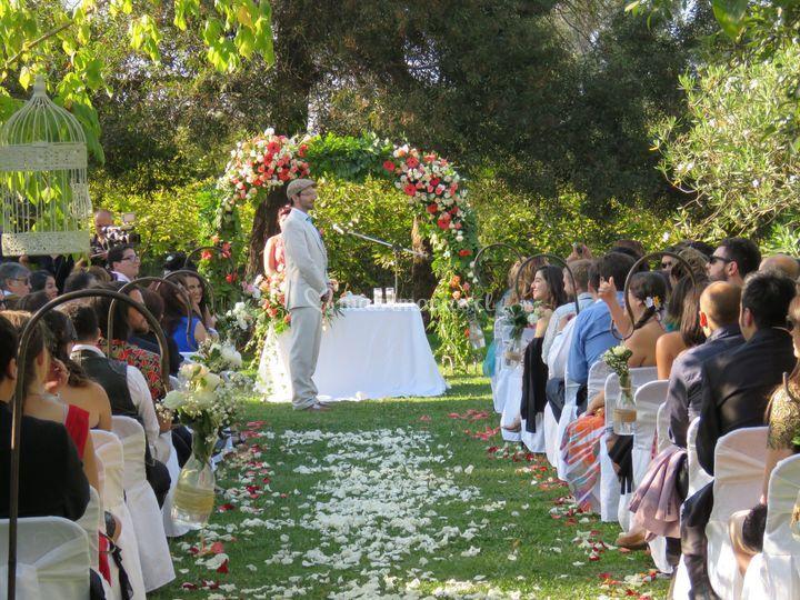 Ceremonia árbol grande