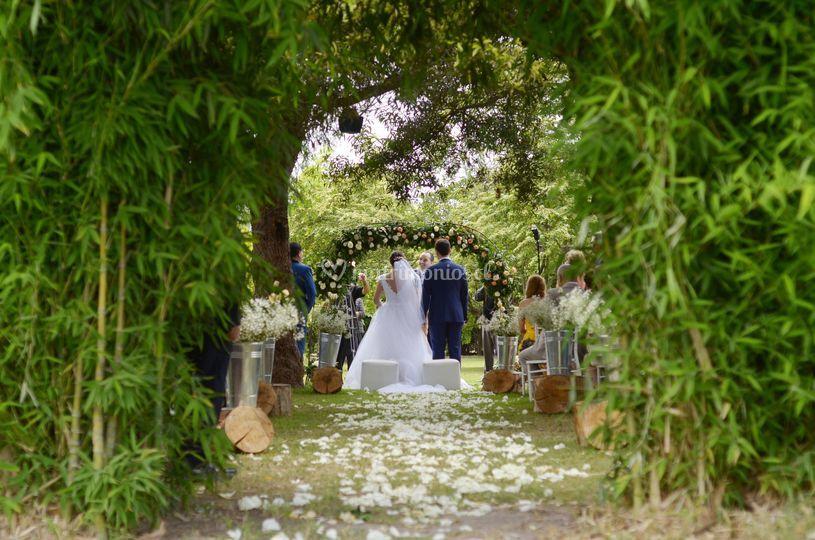 Ceremonia área bambú