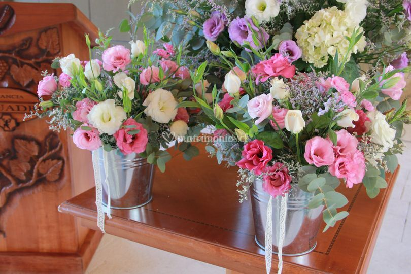 Flores de hermosos colores