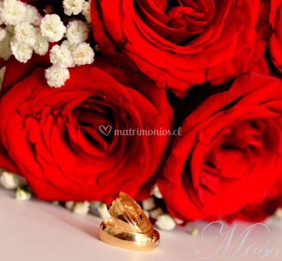 Matrimonio M & S