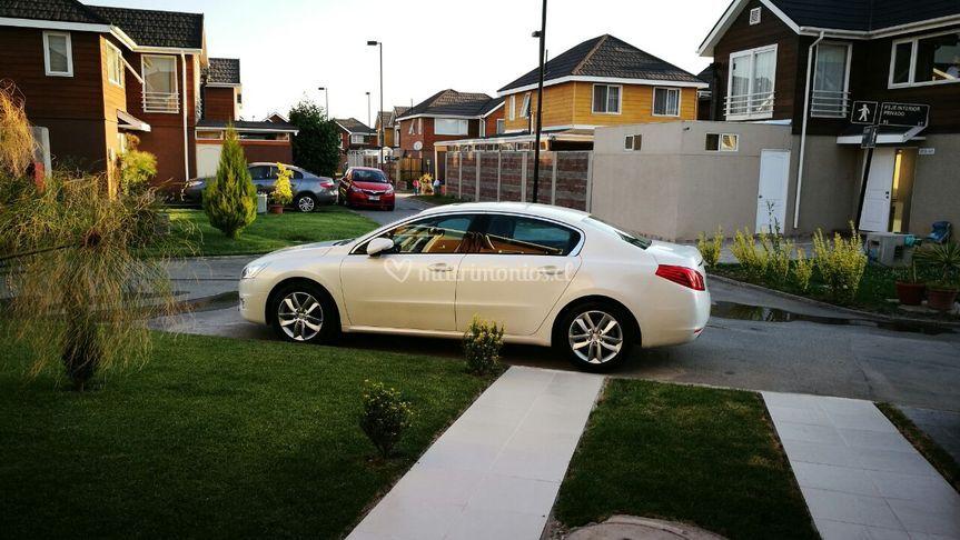 Auto Novios Elegance