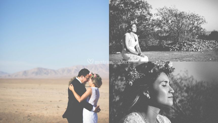 ProVisual Fotografias