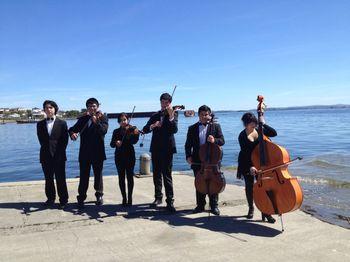 The Cadenza Strings