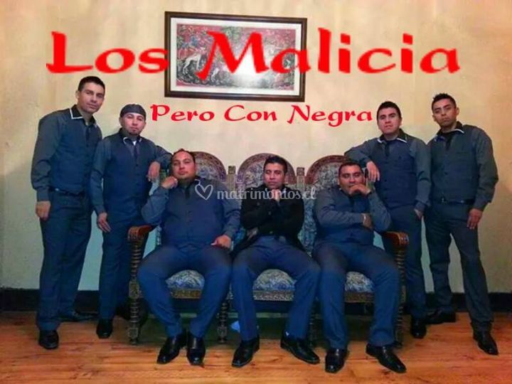 Los Malicia