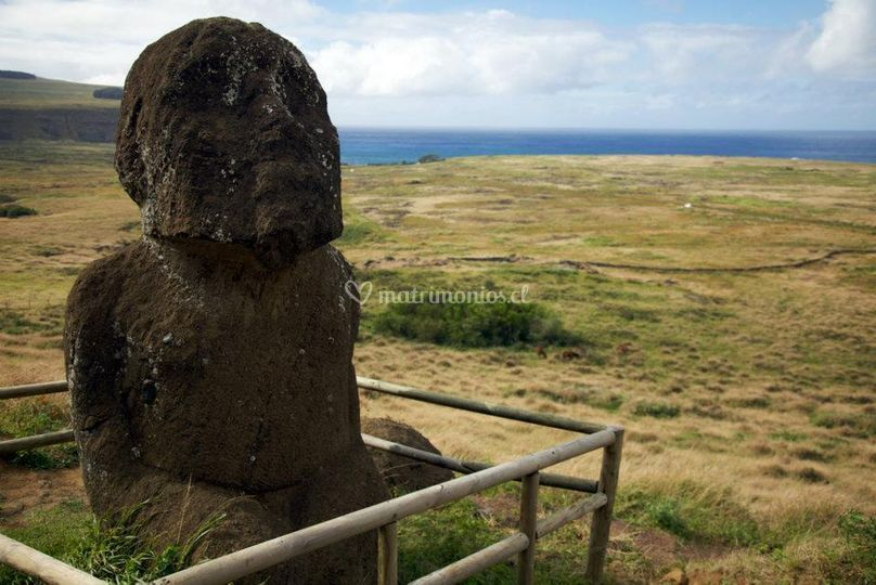 Tours: Cantera de moai