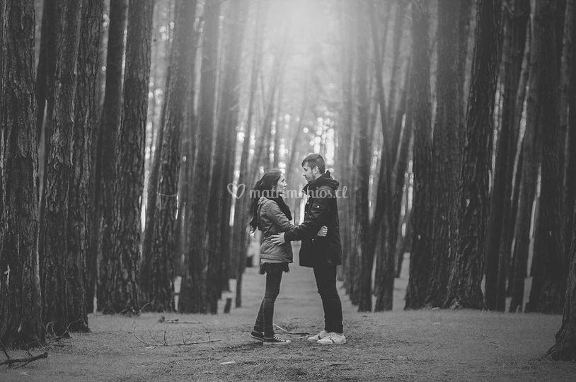 Amor en el bosque