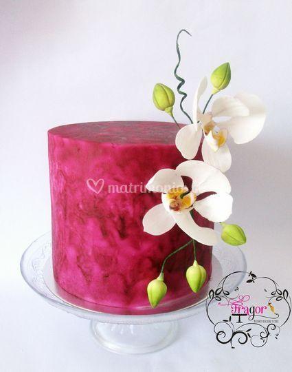 Tortas modernas