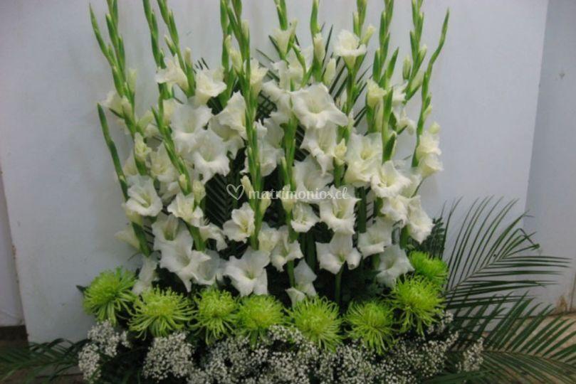 Patricia Corral Diseño Floral