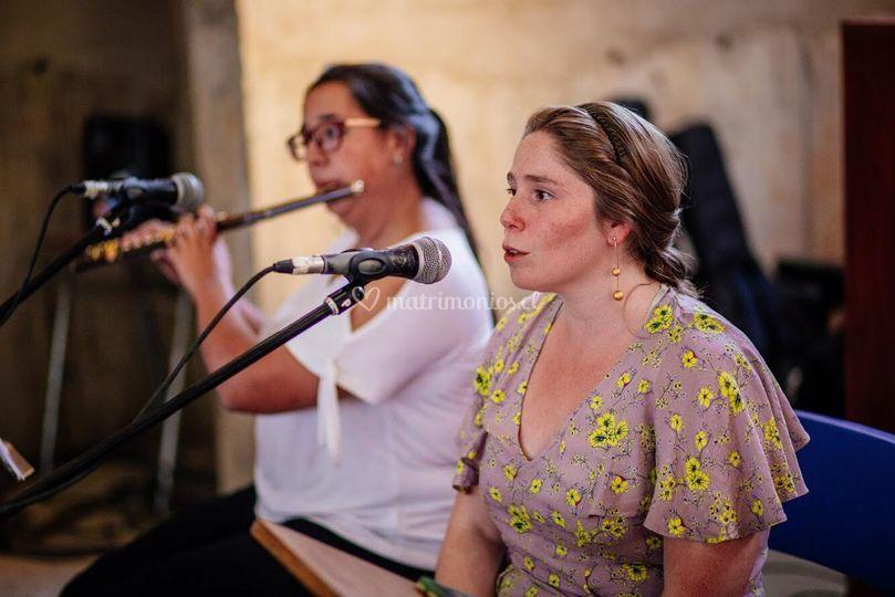 Voz femenina