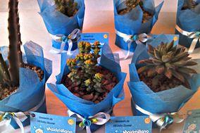 Souvenir Cactus Maipú