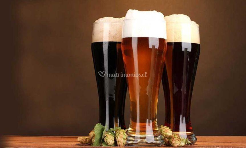 Cervecería Tribal Spa