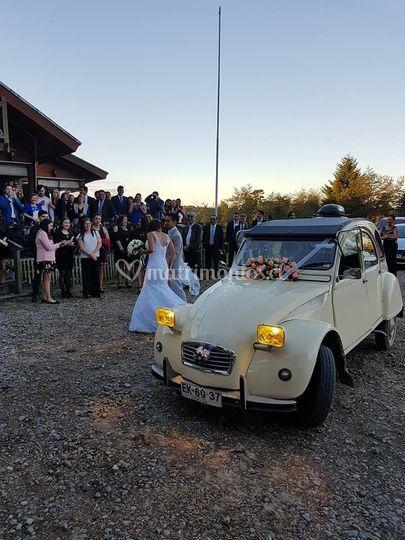 Matrimonio en Puerto Montt.