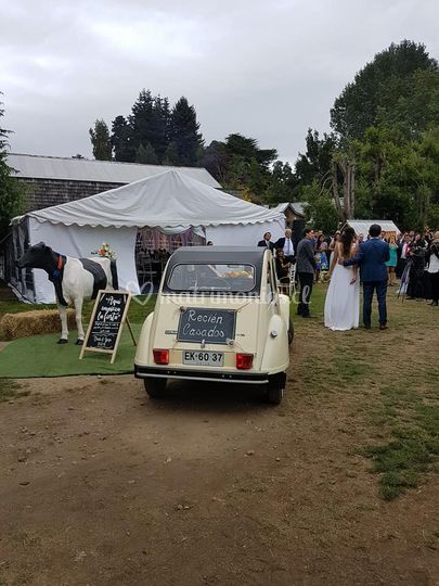 Matrimonio en Frutillar.