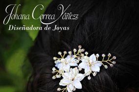 Johana Correa Yáñez