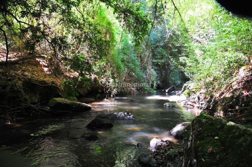 Foto río