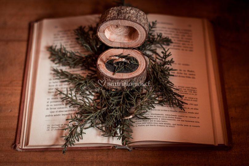 Hermosos anillos
