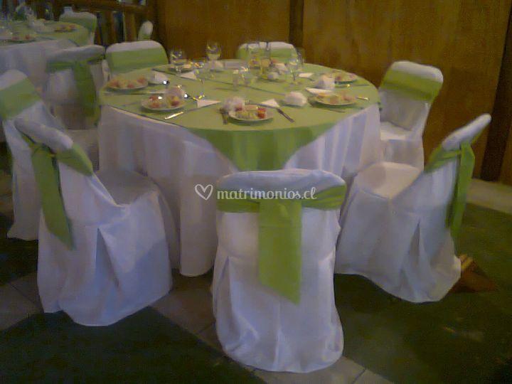 Lazo y carpeta verde pistacho