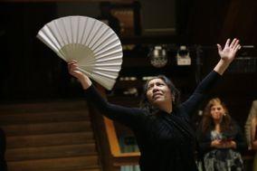 Flamencovy