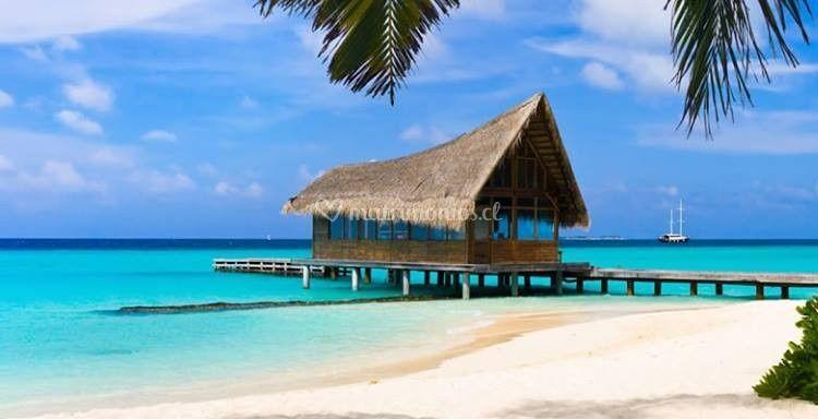 Océano Turismo