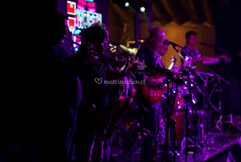 Pop Band
