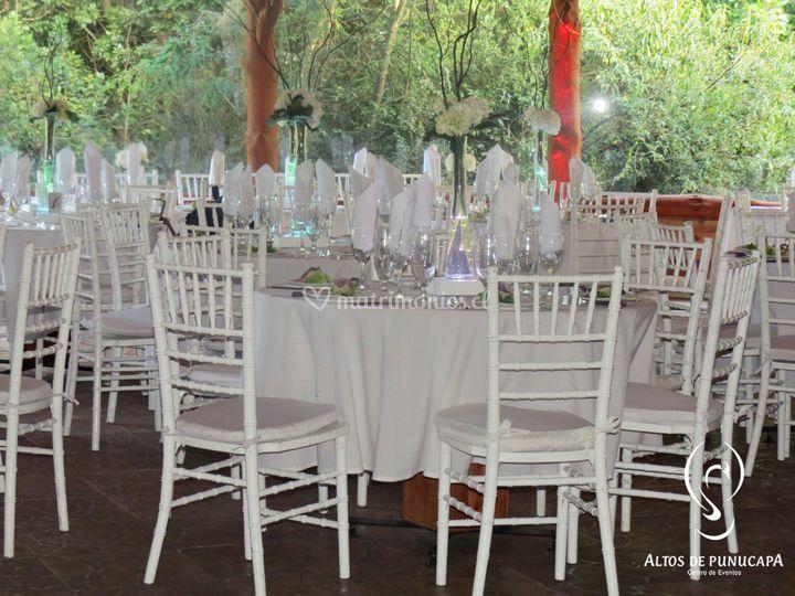 Matrimonio - foto interior