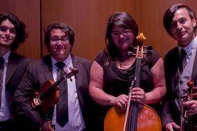 Austral String Quartet