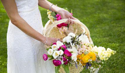 Lirio Weddings Films