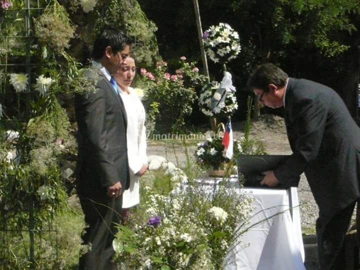 Decoración boda civil jardín
