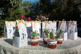Los Alfileres de Irene -  Cactus Souvenir