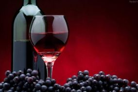 Vinos Vineyard