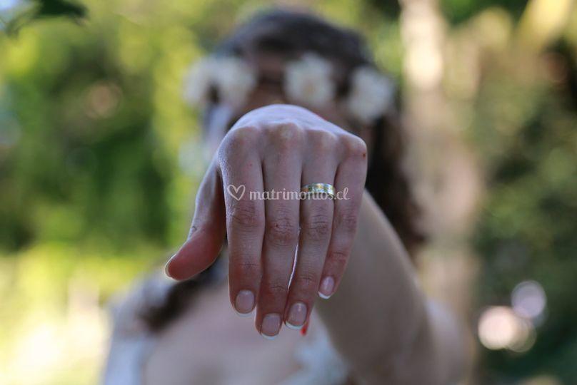 Argollas de una novias