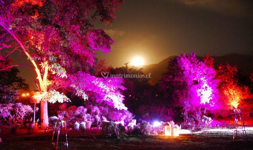 Luna saliendo sobre el parque