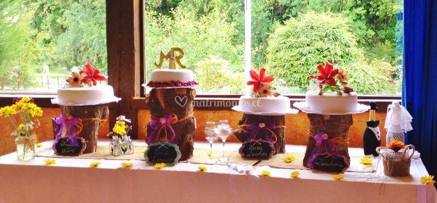 Diversidad de tortas