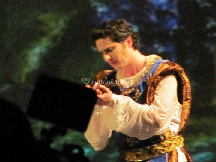 En Opera La Flauta Mágica