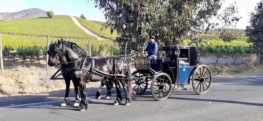 Coupe 1840, 2 caballos