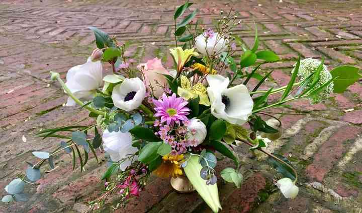 Florería Happy Bee