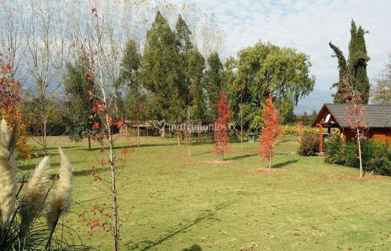 Lindo jardín